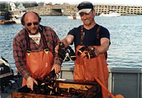 Maine Live Lobster near Brunswick, Bath, Brunswick, Freeport, and Boothbay Harbor Maine