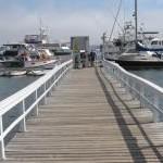 Dolphin Marina Restaurant