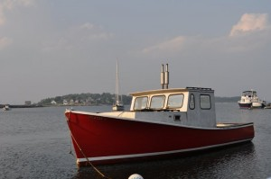 Maine Lobster Hauling and seal watching tours